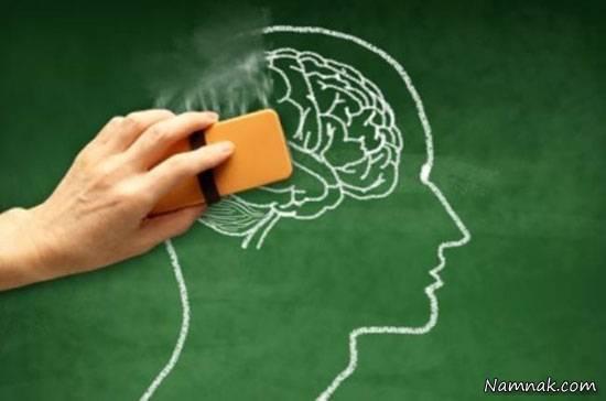 نقش سروتونین در یادگیری و تقویت حافظه