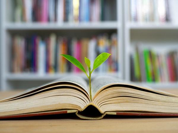 ۱۰ عادت مطالعه موثر