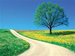 بهار؛ فصل شکوفایی و رویش