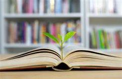 نکاتي براي دانشآموزاني که درس خواندن را به تعويق مياندازند: چطور براي درس خواندن انگيزه پيدا کنيم؟
